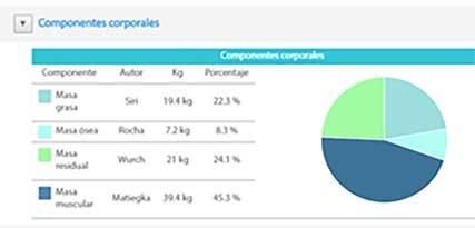 Informe de composición corporal