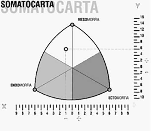 Imagen somatocarta
